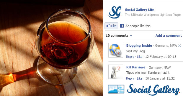 Social Gallery Lite Plugin für WordPress