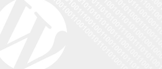 Umfassende Serverdaten Info mit WP-ServerInfo