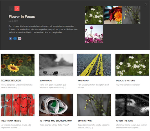 Colio: Ein responsives Portfolio WordPress Plugin