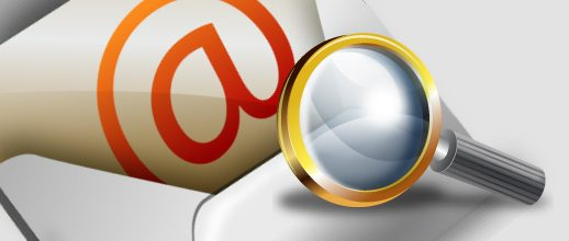 WP Easy WordPress Mailchimp Integration Pro