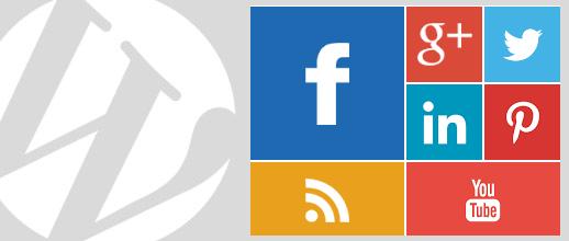 Metro Style Social Widget für WordPress